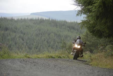 Easy going trails - it's all about the navigation and having fun.