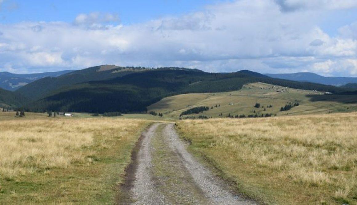Dirty Dozen Romania Wilderness Adventure – closing soon