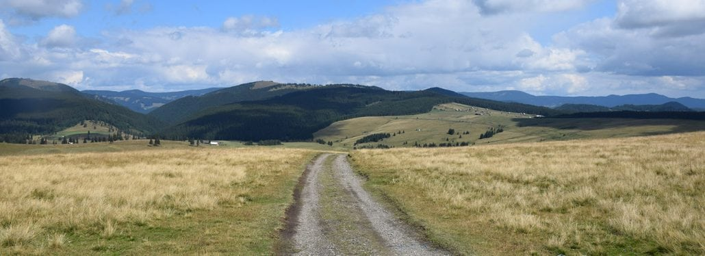 The wilderness tracks in Romania are waiting for you to explore them.