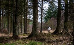 New – Kielder Adventure Riding Camps