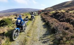 IOM 500 Report and Results