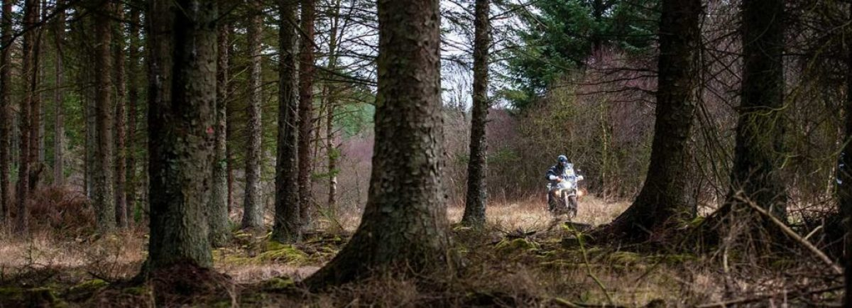 Over 400km of tracks and trails ready to explore